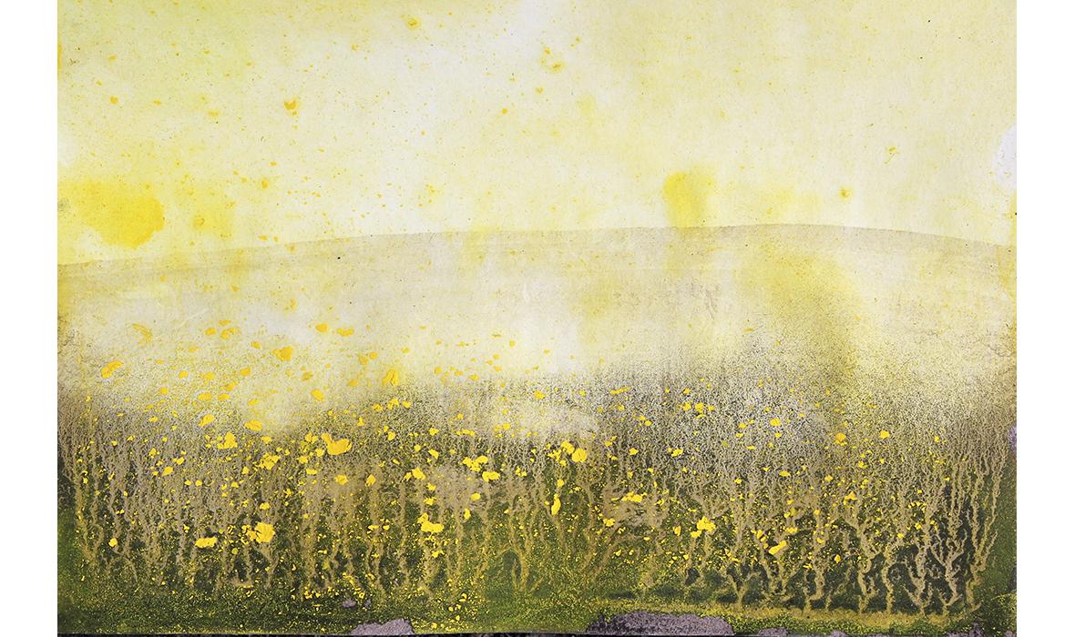 gult1180x700.jpg